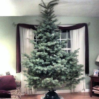 2012_CHristmasTree