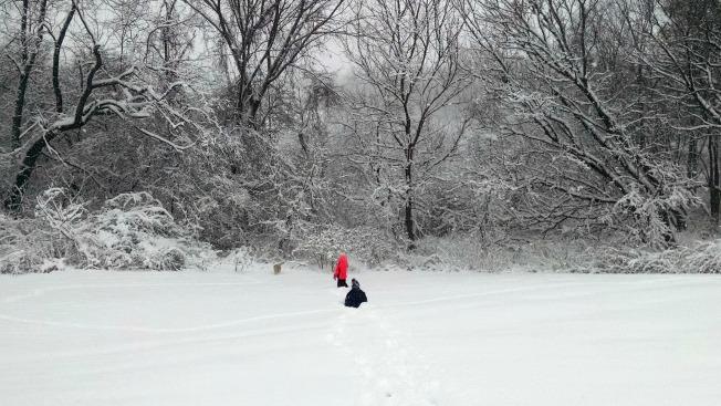 SnowLandscape