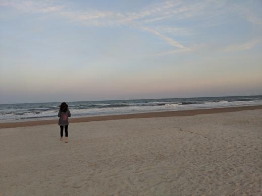 The Bean walking on the beach at dusk.