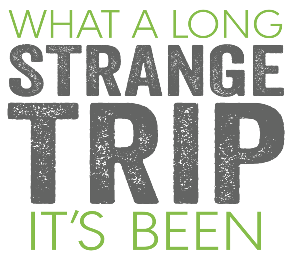 Green and grey text on a white background saying: what a long strange trip it's been.